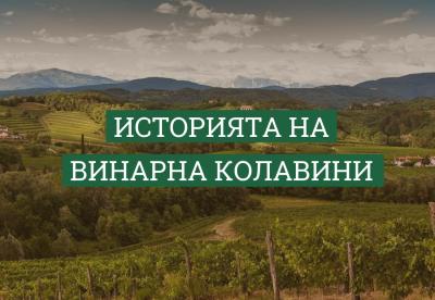 Историята на винарна Колавини
